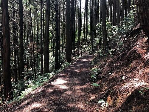 奈良県天石立神社アクセス