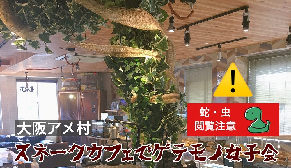 大阪アメリカ村スネークカフェに行ってきた
